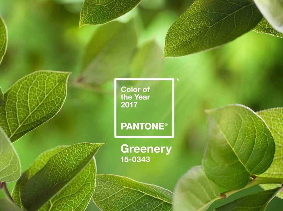 Pantone Unveils Color of the Year 2017: PANTONE 15-0343 Greenery