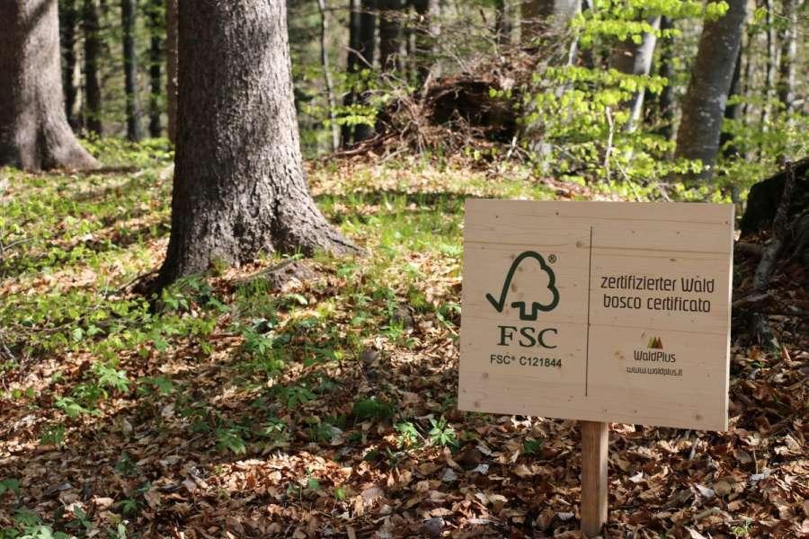 FSC opera per difendere le foreste del mondo