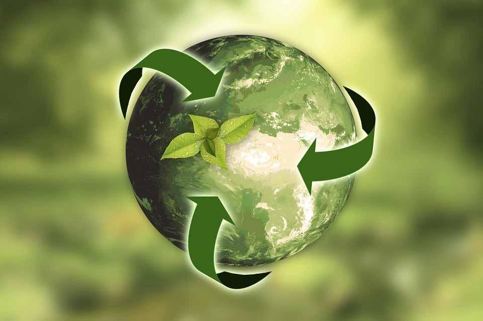 Catas: un servicio a las empresas del sector para abordar correctamente la sostenibilidad