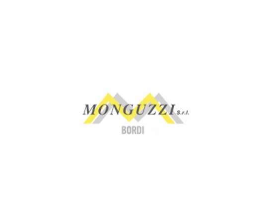 Logo Monguzzi S.r.l.
